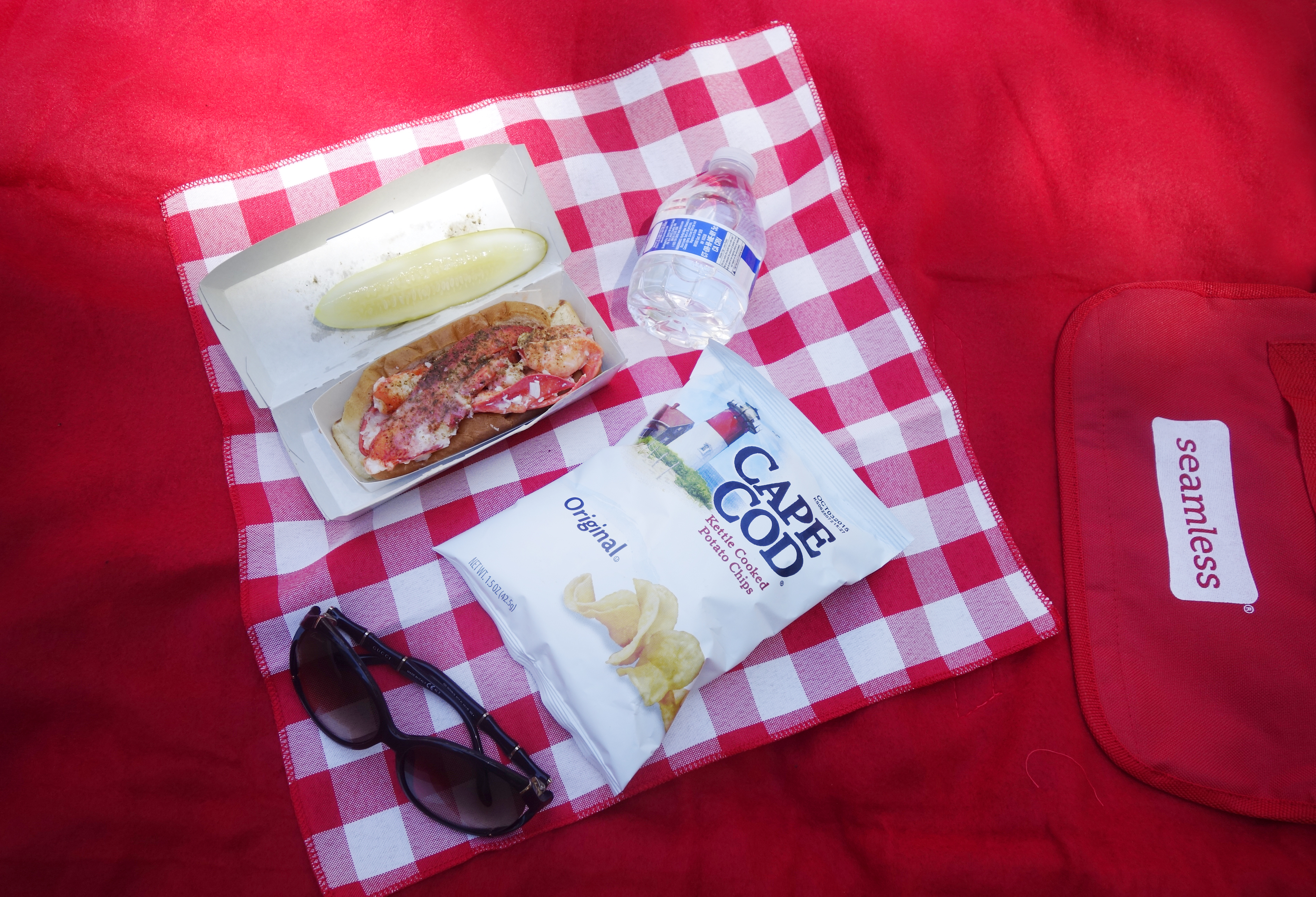 Seamless Picnic Day - 5